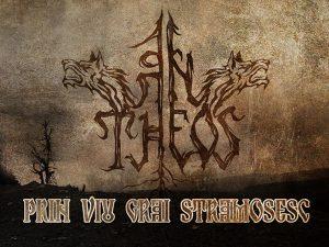 an_theos-SM