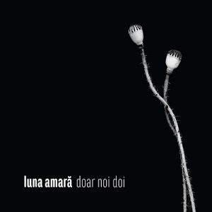 doar-noi-doi-cover