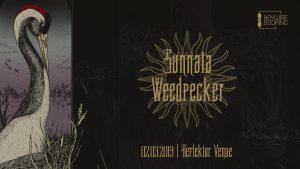 Rock în transă cu Sunnata și Weedpecker în Reflektor Venue Timișoara