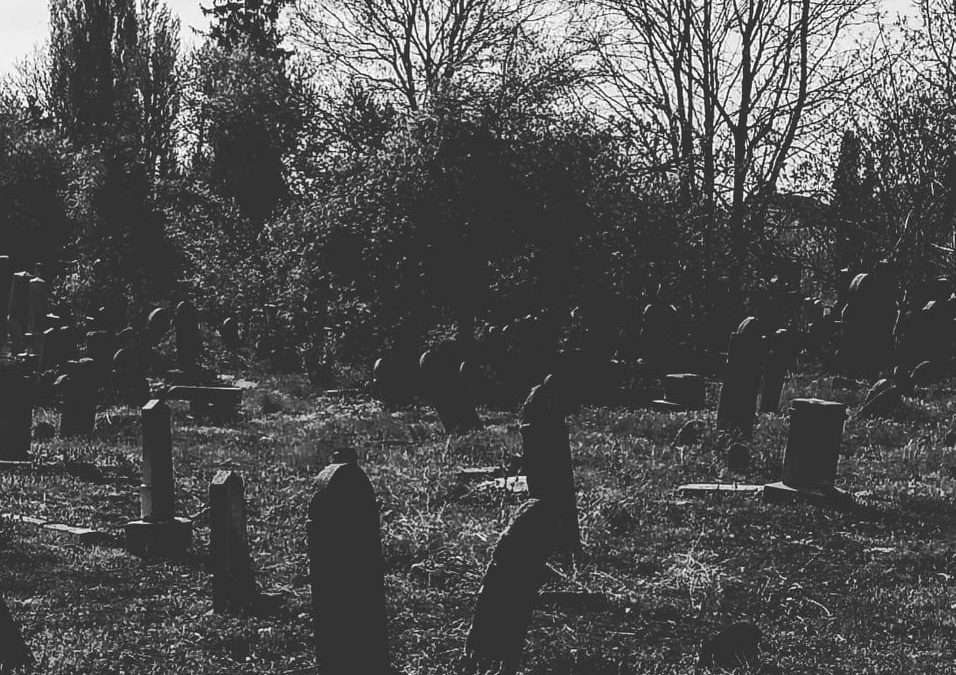 Kult of dead, prima trupă de Depressive Suicide Black Metal