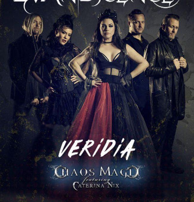 Evanescence la Bucuresti: Program si reguli de acces
